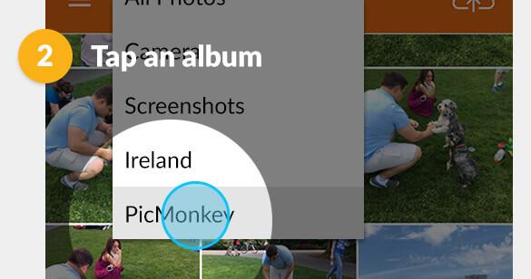 faqs picmonkey mobile app picmonkey